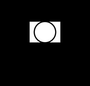Taylor woods logo